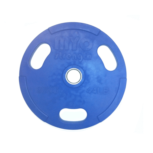 blue olympic disc 20kg